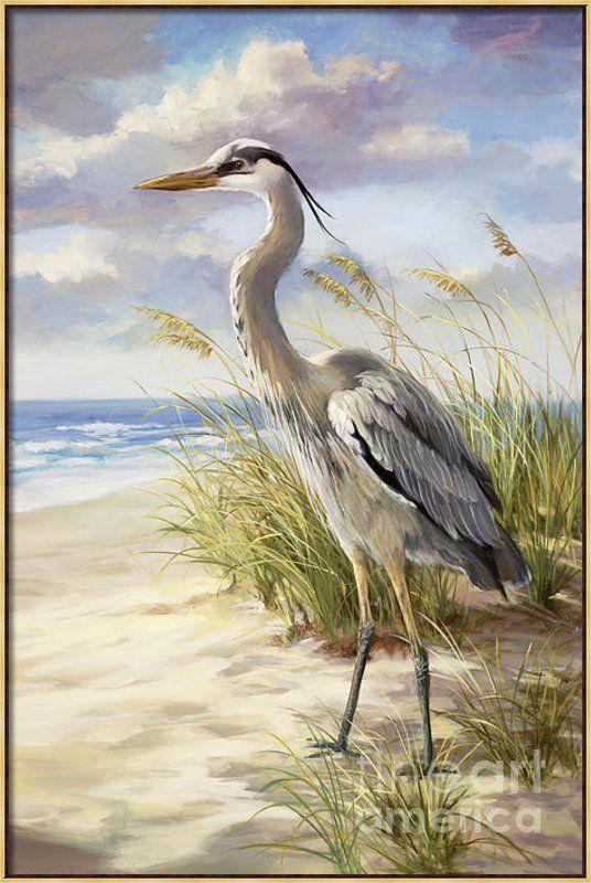 Blue Heron  Canvas Print / Canvas Art By Laurie Hein