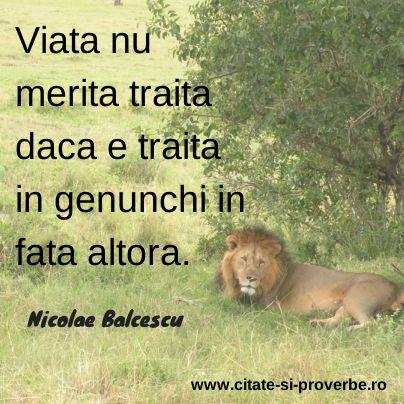 #citate despre #viata