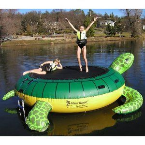 turtle water trampoline... although then i'd need a body of water to put it in lol