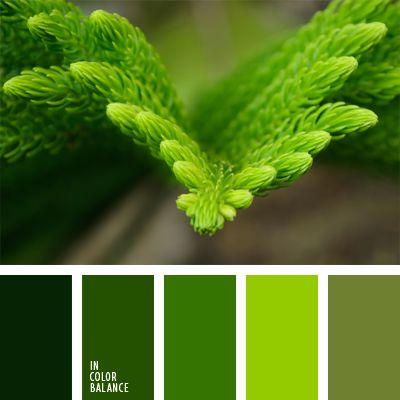 color abeto joven, color esmeralda, color verde aguacate, colores vivos, de color verde lechuga, elección del color, paleta de colores monocromática, paleta del color verde monocromática, tonos verdes, verde fuerte, verde lechuga y verde, verde oscuro, verde vivo.