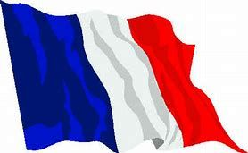 Image result for french flag image