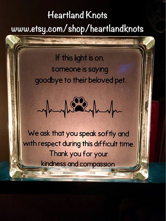 Decal Only Vet Clinic Euthanasia Compassion Glass Block Veterinary Clinic Vet Clinics Pet Clinic
