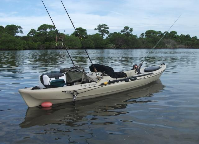 This is the idea...different kayak, but this is my project for the upcoming summer months.