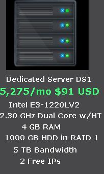 Dedicated Server at Rs. 5,275/mo ($91 USD)