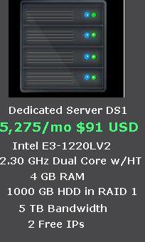 Dedicated Server at Rs. 5,275/mo ($91 USD)