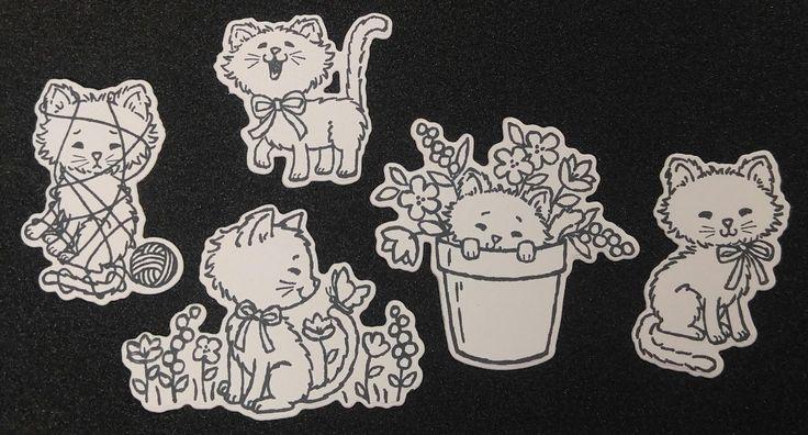 Playful Kitties