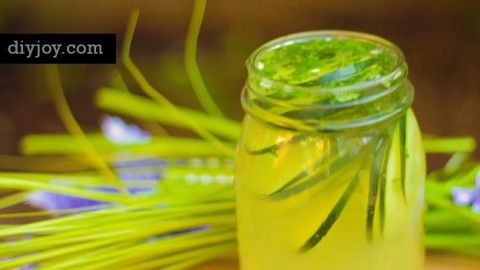 Ayurvedic Detox Water | Weight Loss, Clear Skin, Flat Belly, Anti-Aging Recipe | DIY Joy Projects and Crafts Ideas