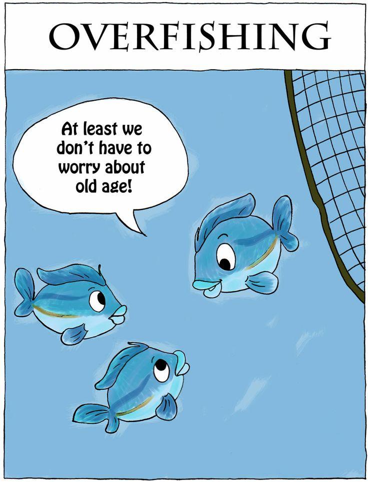 overfishing fish and n d web Overfishingorg, nd web 22 nov 2012  too many people chase too few fish ocean planet: perils-overfishing nasa, 1995 web 22 nov2012.