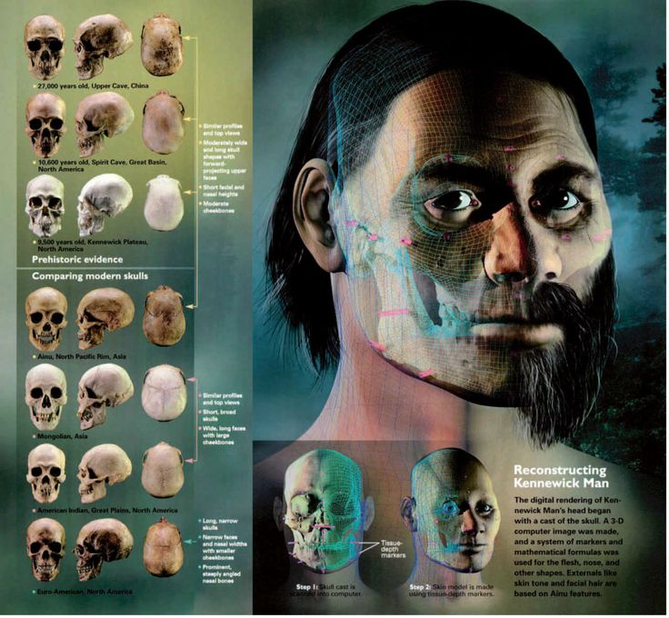 This computer-generated image reconstructs the face of the Kennewick Man, a 9,500-year-old skeleton found in Washington State, US, in 1996. Scientists made a 3D image of the skull before adding features based around the bone structure, as well as those common in the Ainu people – of whom the man was thought to be an ancestor.