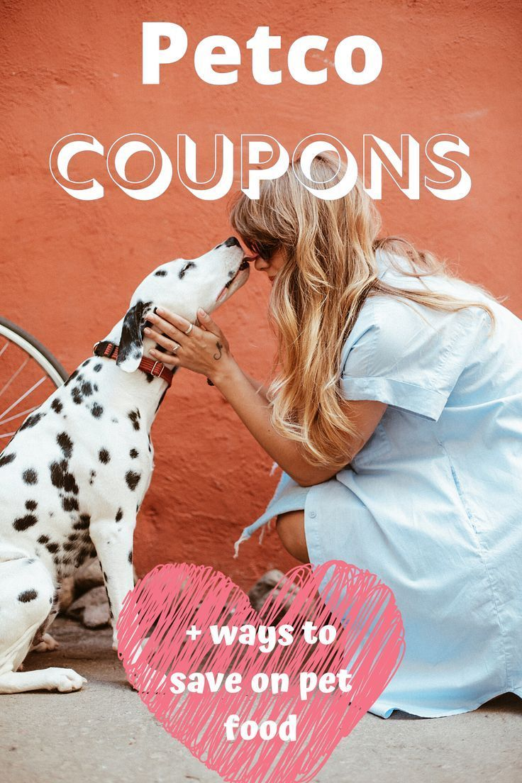 Gordman S Coupons For In Store Use Printable 2020 Savvy Sometimes In 2020 Petco Coupons Save Money Fast