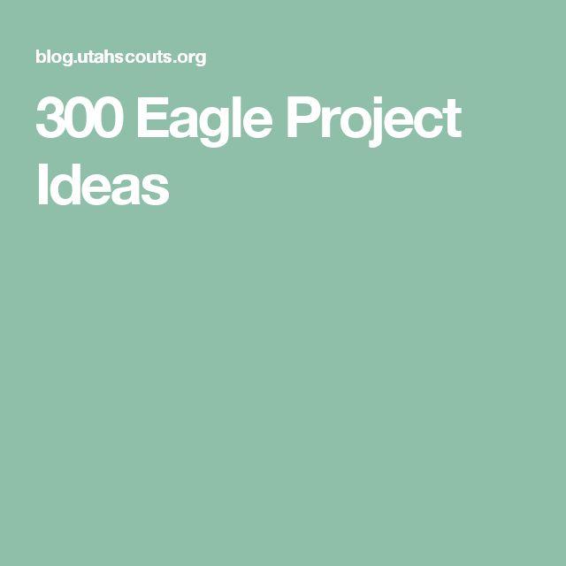 300 Eagle Project Ideas