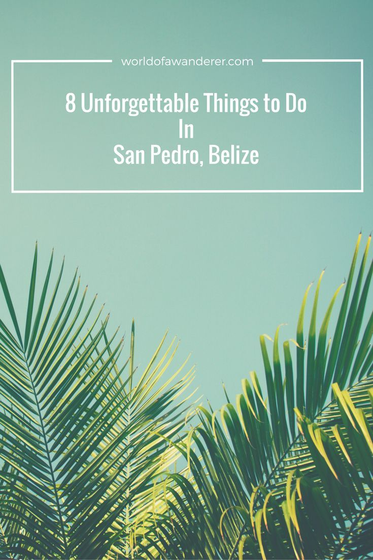 8 Unforgettable Things to Do in San Pedro, Belize