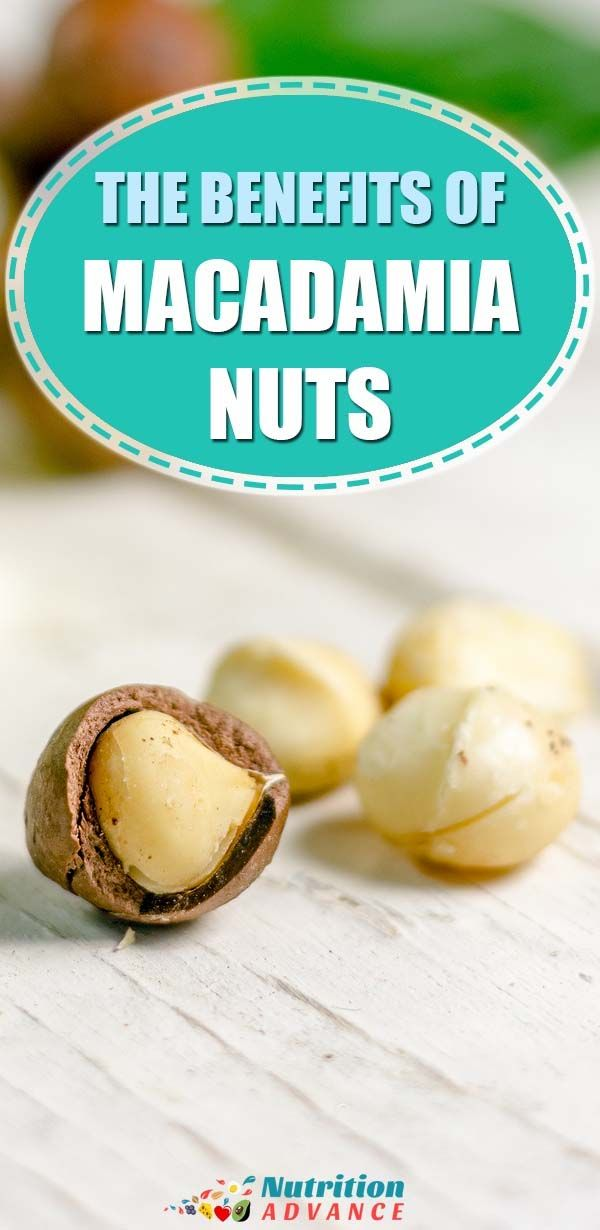 Are Macadamia Nuts Good For You Macadamia Nuts Food Articles Macadamia Nuts Nutrition