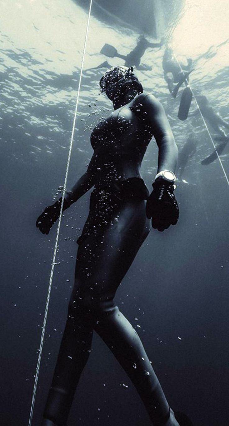 1000+ Images About Spearfishing And Freediving On Pinterest