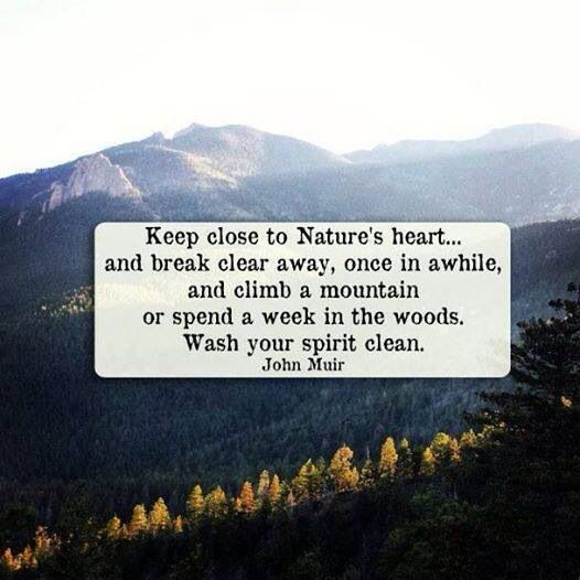 Best Nature Quotes: Best 25+ Hiking Quotes Ideas On Pinterest