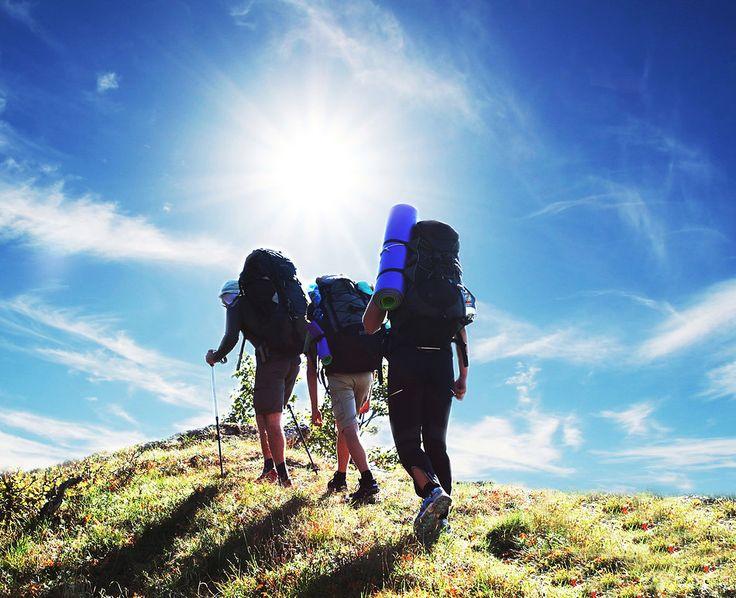 Túrázás közben nincs semmi más körülöttünk csak a természet.  http://www.mormota.eu/egyeb/rolunk