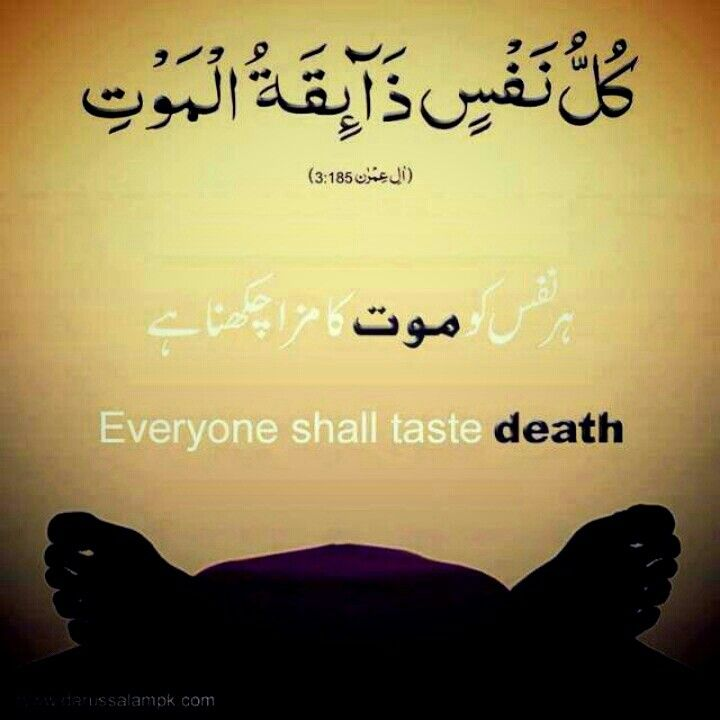 Islamic Quotes For Death Of A Loved One: #death #Muslim #Islam #humanity #science #afterlife