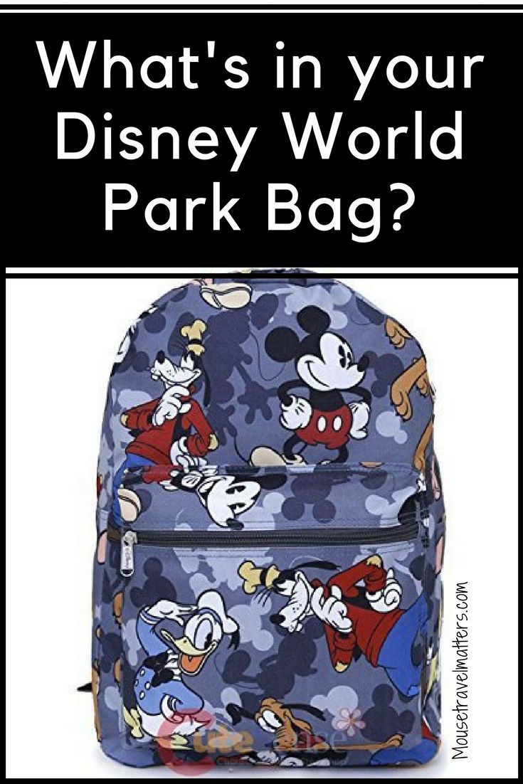 03a47529cd3 What s in our park bag  A few essentials always make a Disney park day more  enjoyable and can even save a day from turning