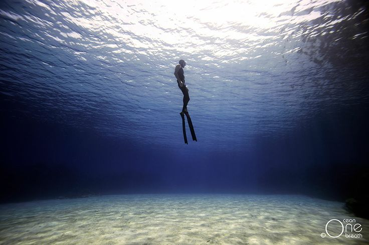 ... Blue Silence ... Freediving - Photo taken on one breath by Christina Saenz de Santamaria. #freediving #underwater #1ocean1breath #ocean #oneoceanonebreath