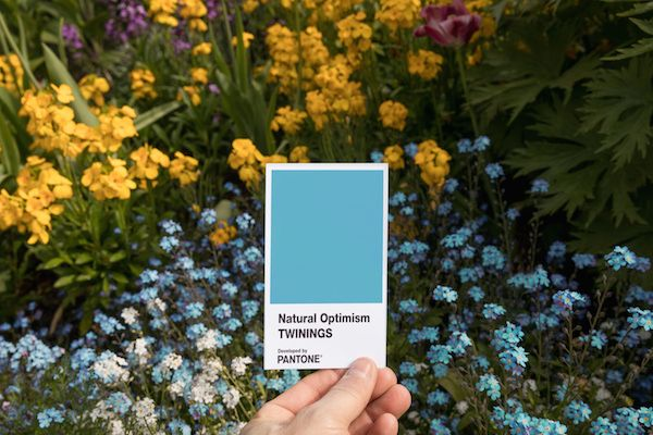 New PANTONE Color 'Natural Optimism' Is Designed To Cheer You Up - DesignTAXI.com