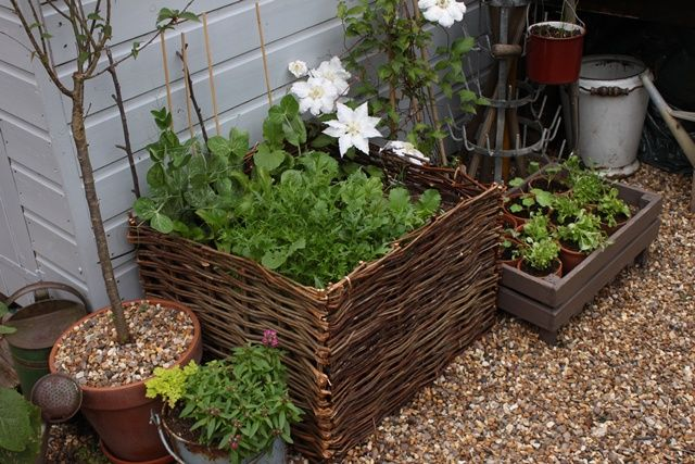 gardenFruit Crates, Old Baskets, Rectangular Baskets, You, Baskets Planters
