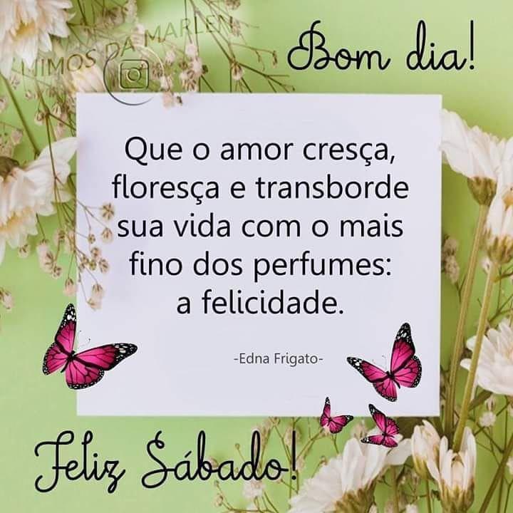 Bomdia Paz Amor Florescer Gratidao Mensagens Mimosdamarlen