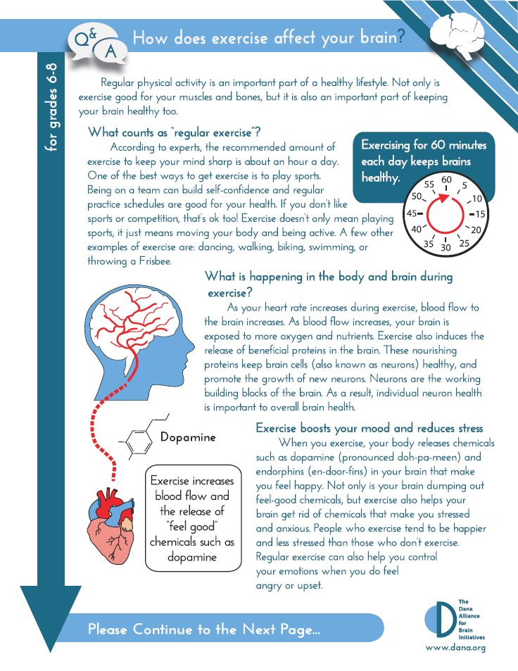 Downloadable Fact Sheets On Various Brain Science Topics