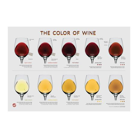 26 best Wine  Champagne images on Pinterest  Info graphics Sparkling wine and Wine cheese