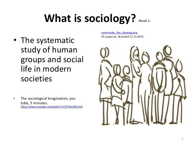 nature and scope of sociological theories The nature of sociological theory okumagba, oghenero paul, fayeye, jo & ejechi, eucharia sociological for a theory to be used wisely with sharp awareness, awareness users must have the knowledge of its nature and of its varieties we need to know its.