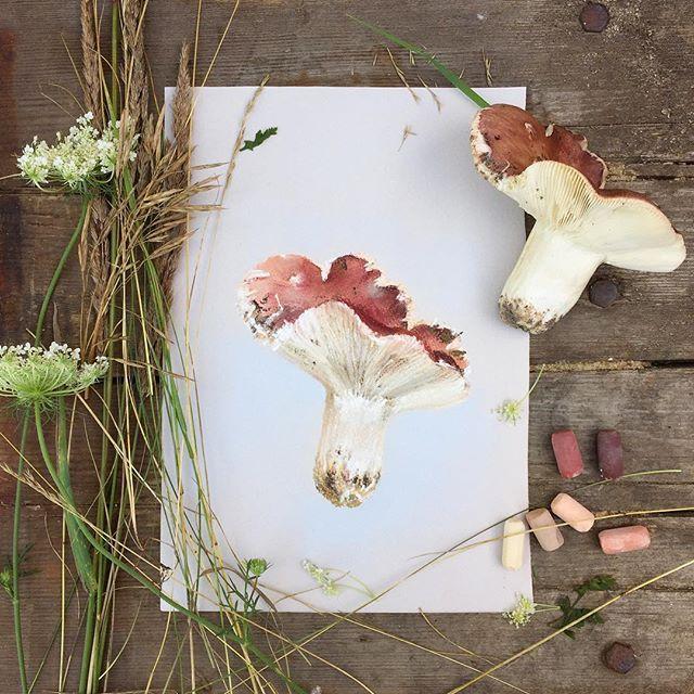 Брянская сыроежка Что-то совсем летом, а особенно в такую жару не рисуется...#пастель #рисуемпастелью #грибы #сыроежка #лето #арт #artist #art #softpastel #softpastels #mushrooms
