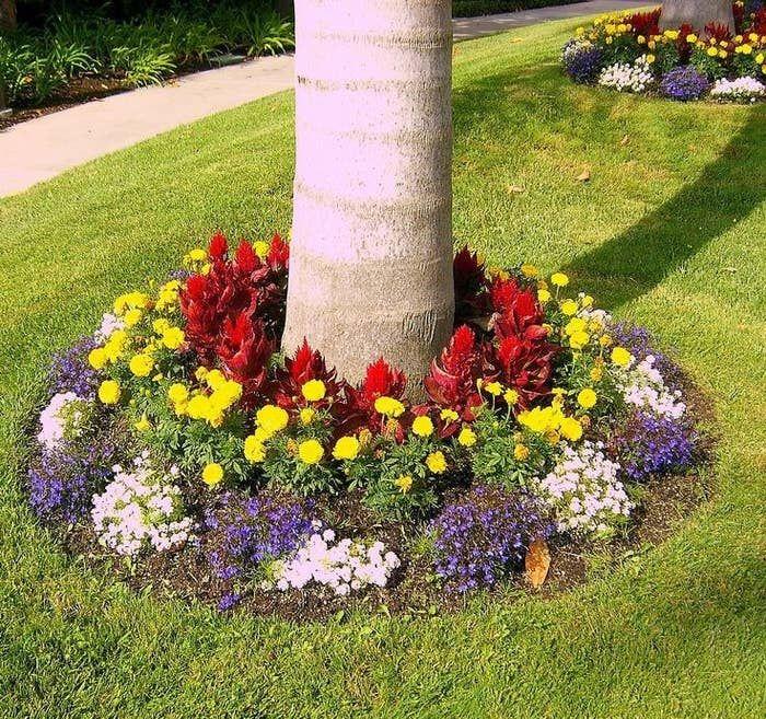35++ Jardines bonitos y economicos ideas in 2021