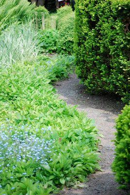 Länge har jag velat besöka Ulla Molins trädgård i Höganäs. Därför var det  självklart att vi skulle åka dit på vår trädgårdsrunda. Jag varnar alla  läsare, detta inlägg innehåller extremt många bilder och kan därför bli  lite långrandigt för andra än dom mest inbitna trädgårdsnördarna. Jag  tyck