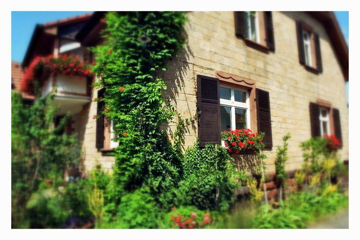 Mitten im Dorf und doch herrlich grün! www.obsthof-am-goldberg.de - Verkauf über VIA VINI Immobilien Gabriele Scheidt - www.via-vini.de © Wiltrud Schumann