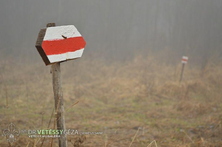 http://vetessy.hu/galeria/2014/Teli-cserkesztabor---Hidegkuti-Turistahaz/2-nap/35/view