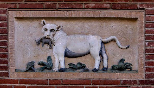 Gevelsteen met een kat by Vereniging Vrienden van Amsterdamse Gevelstenen,