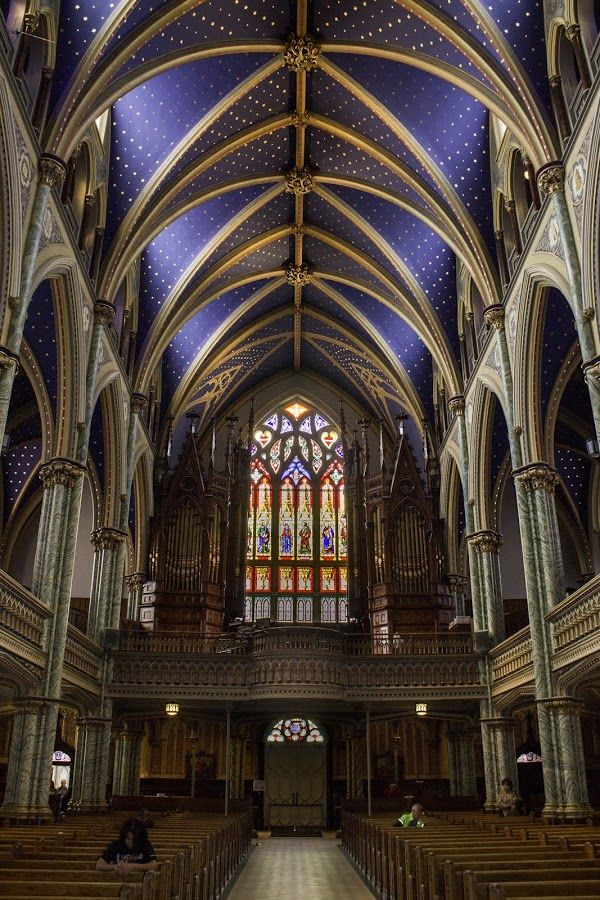 Notre Dame Cathedral Ottawa by Anna Soskina - Buildings & Architecture Places of Worship ( interior, notre dame, ottawa, cathedral, basilica )