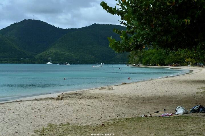 Pointe marin - Sainte Anne. Martinique. FWI