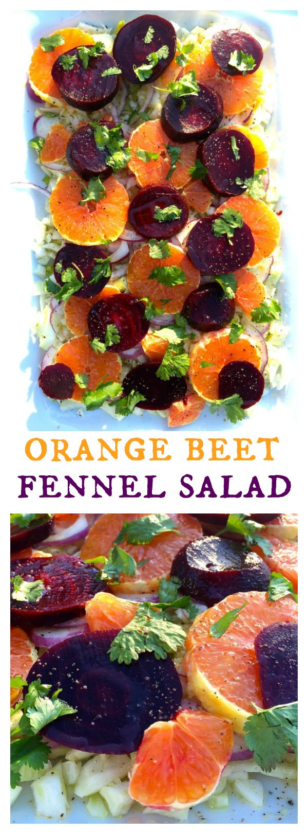 orange beet fennel salad - Ina Garten Fennel Salad