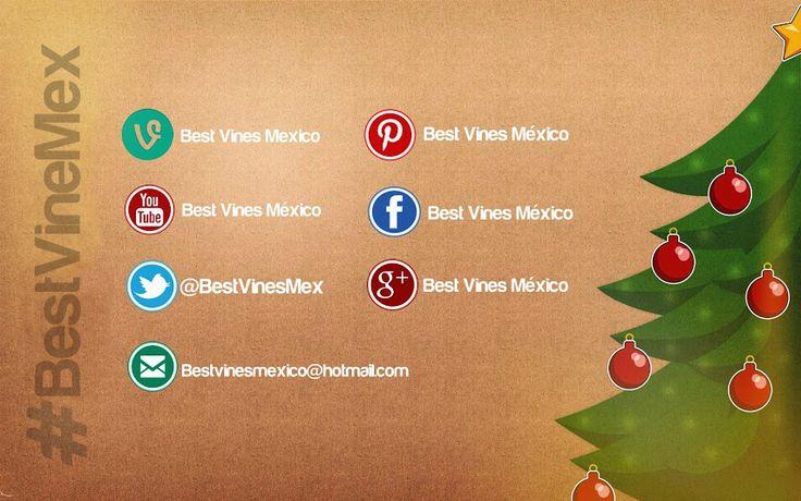 Síguenos en todas nuestras redes sociales!