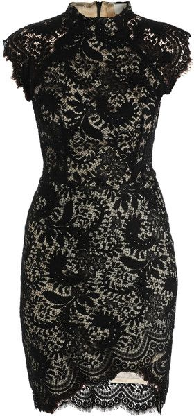 Lover Black Sara Lace Fitted Dress