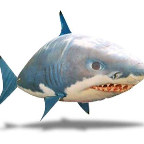 17 meilleures id es propos de les requins sur pinterest - Requin rigolo ...