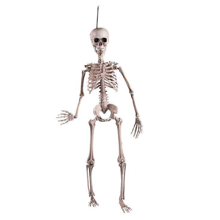 Posable+Skeleton+-+OrientalTrading.com