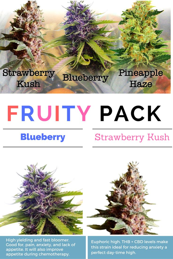 Fruity Mixpack includes Strawberry Kush, Pineapple Haze and Blueberry! (All…