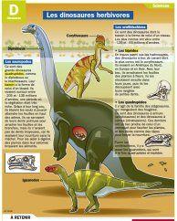 Les dinosaures herbivores
