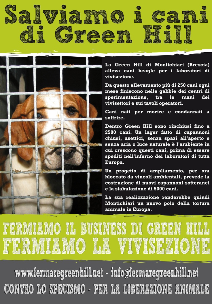 End Cruelty End Vivisection