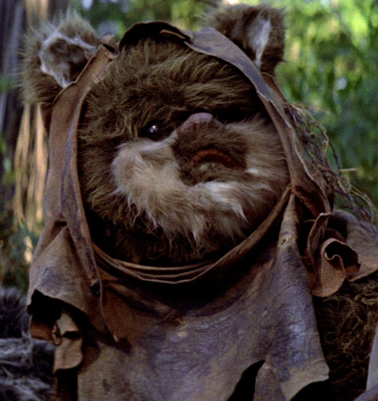 Ewok! They're just so cute!!