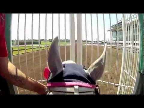 Quarter Horse Helmet Cam at Canterbury Park with Jockey Jeramie Fennell - YouTube