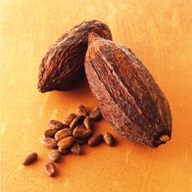 The Mian Indians used the Cocoa Bean years ago for Medicine and it was so valuable they used it for money too! Xocai is taking the Cocoa Bean back to its original use!! Love it!!