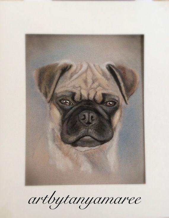 Custom pastel pet portrait A4 size. Pastel by Artbytanyamaree
