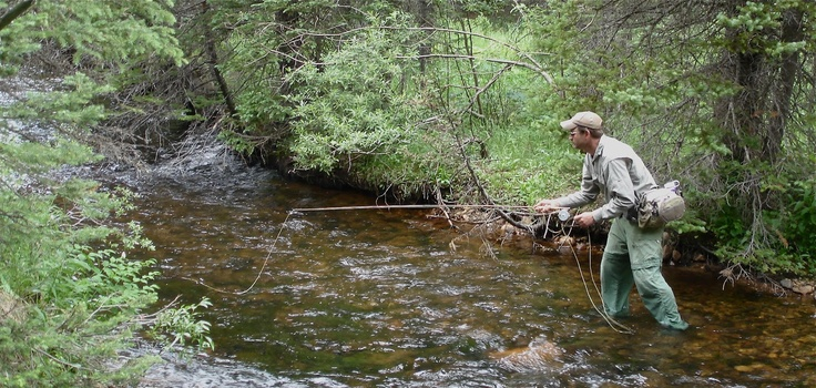 Fishing colorado backcountry small mountain stream blog for Backcountry fly fishing